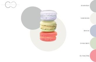 Macaron Franchise: Color Palette